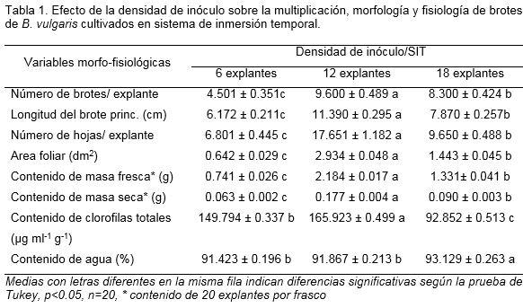 Bio peligro del s/ímbolo de Mylar aer/ógrafo pintura del arte de la plantilla A1 Tama/ño de la plantilla - Xlarge